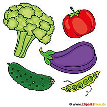 面白い野菜の写真
