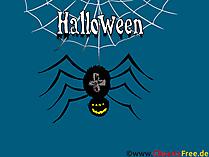 ハロウィーンの絵クモ