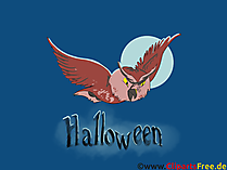 Clip Art Uhu - Illustrationen, Bilder, Grafiken, Cliparts, Comics, Cartoons zu Halloween