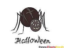 Clipart Spinne - Illustrationen, Bilder, Grafiken, Cliparts, Comics, Cartoons zu Halloween