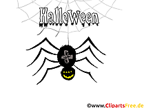 Spinne Illustration - Illustrationen, Bilder, Grafiken, Cliparts, Comics, Cartoons zu Halloween