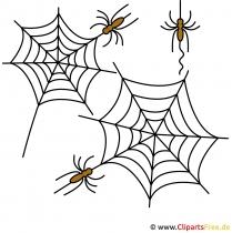 Spinnen Clipart
