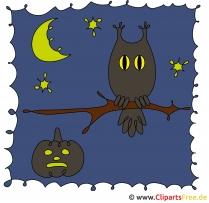 Uhu Clipart zu Halloween