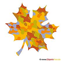 Maple clipart gratis