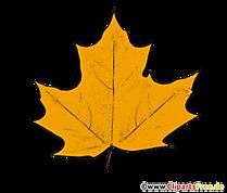 Imagine cu frunze de arțar galben - cliparts de toamnă