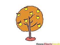 Apple boom in de herfst Clipart, afbeelding, illustratie gratis