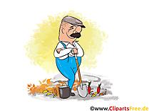 Werk in de tuin in de herfst Clipart, afbeeldingen, cartoons, strips