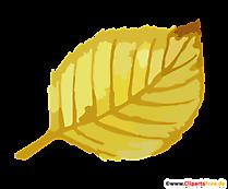 Frunze de tei în toamnă clipart, imagine transparentă
