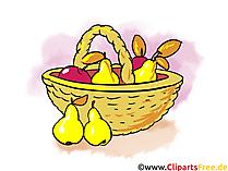 Bilder Download zum Thema Herbst und Ernte