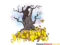 Download foto's voor de herfst