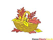 Download gratis foto's - mand met gele bladeren in de herfst