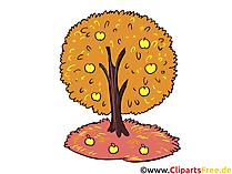 Gouden herfstfoto's - herfstboom