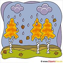 Berkenafbeelding - Clip Art Autumn