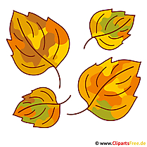 Leaves Clipart - Autumn pictures gratis