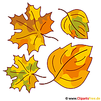 Leaf, leaves, tree leaf - fall pictures for free