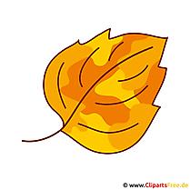 Leaf Clipart - Herfstafbeeldingen gratis