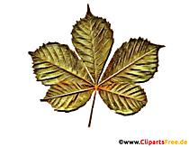 Frunza de castan desen în culoare - clipart pentru școală