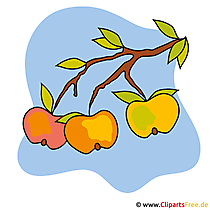 Cartoon appels - stock foto's van de herfst
