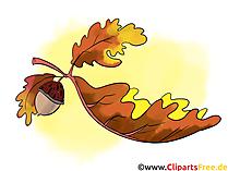 Clip Art Autumn free