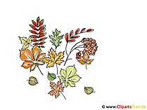 Clipart en foto's herfst