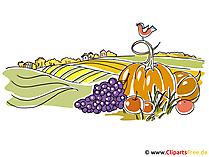 Desktop Hintergrund Herbst