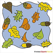 Eiche Blätter Clipart - Kostenlose lizenzfreie Bilder zu Herbst