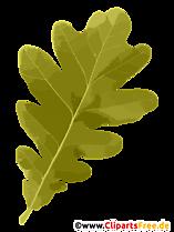 Frunze de stejar Toamnă Clipart Gratuit