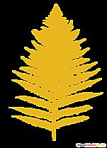 Fern Clipart - miniaturi de botanică