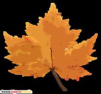 Frunze de arțar galben PNG - Imagini de toamnă gratuite