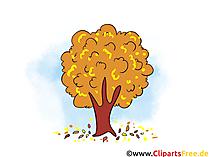 Gratis foto's, clipart, illustraties op het onderwerp van de herfst