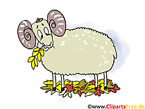 Darmowe Clipart Sheep