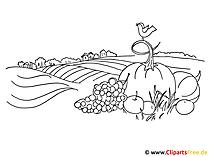 Herbst Ausmalbild