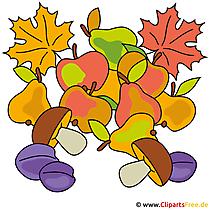 Autumn picture - grzyby, jabłka, gruszki clipart