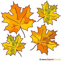 Herbst Clipart kostenlos