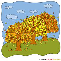 Herbstwald Bild gratis zum Ausdrucken