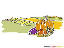 Hintergrundbilder Herbst