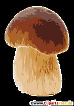 Imagine pinet sau boletus cu cap roșu, clip art, ilustrație