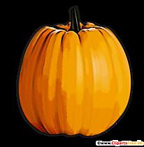 Kürbis im Herbst Bild im PNG-Format