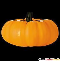 Kürbis im Herbst Clipart, Bild, Illustration