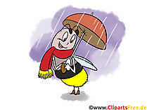 Lustige Bilder Herbst - Biene mit Regenschirm