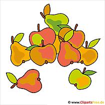 Fruit, oogst, tuin Clipart - gratis herfstafbeeldingen