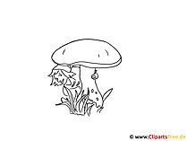 Pilz Bild zum Ausmalen