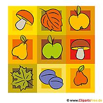 Paddestoelen, peren, appels clip-art - herfst foto gratis