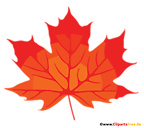 Frunze de arțar roșu clipart, imagine, png
