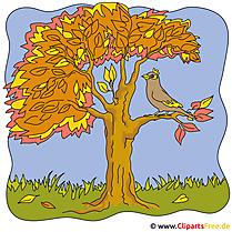 Vogel auf der Ast Clipart - Herbst Bilder gratis