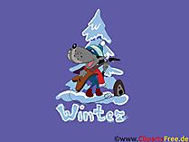 HD背景画像オオカミ、冬、モミの木、雪、クリスマス