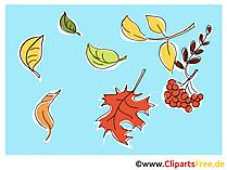 Jesienna tapeta na pulpit za darmo