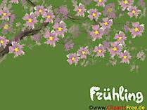 背景画像さくら、花、春