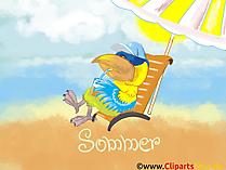 コンピュータのデスクトップのための無料の夏の写真