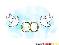 Trouwringen met duiven trouwfoto's, clipart
